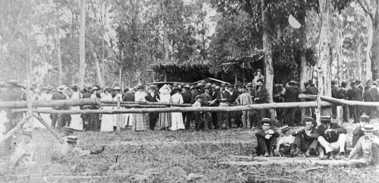 Yandina horse races late 19th century